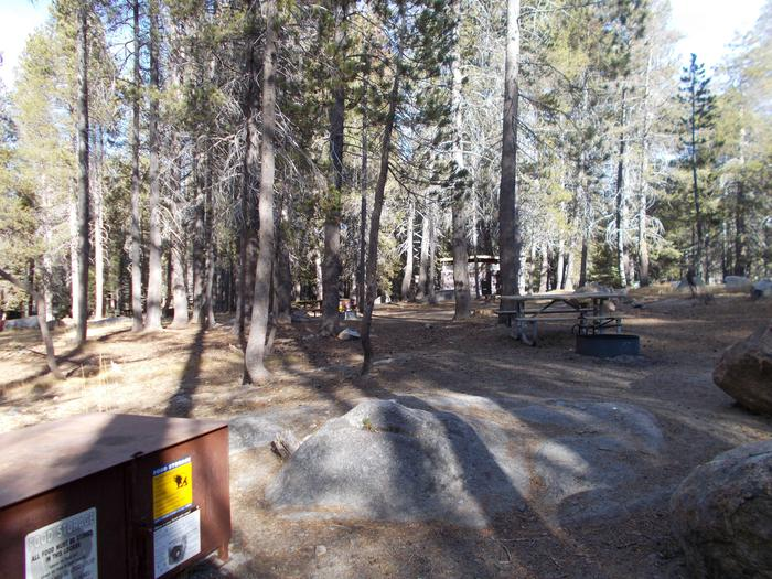 Food locker, picnic table, and fire ringSite 75