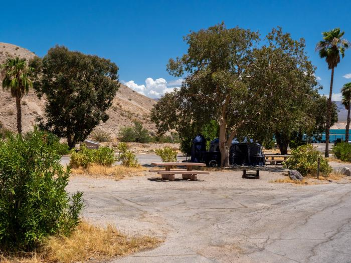 CWC 4003Cottonwood Cove Campground Site 40