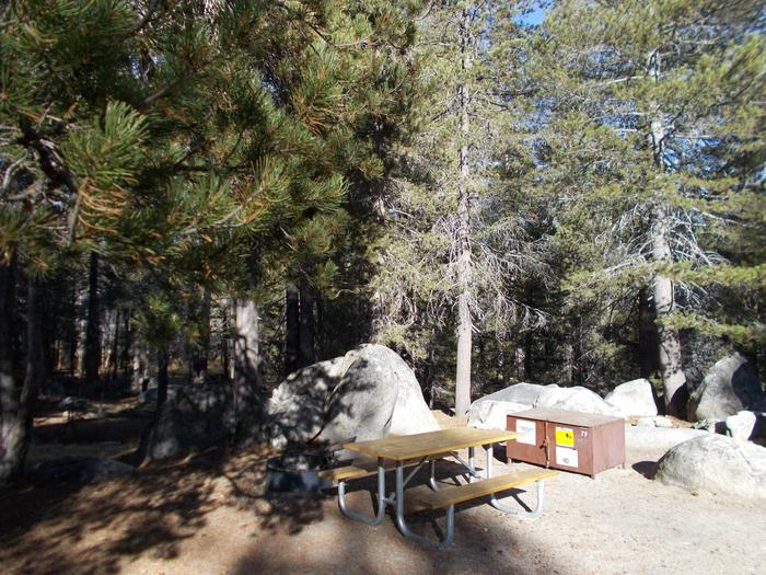 Food locker, picnic table, and fire ringSite 77