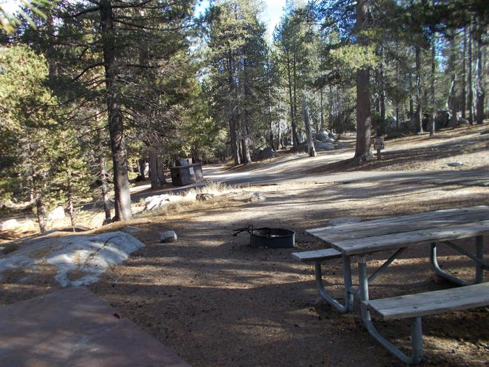 Food locker, picnic table, and fire ringSite 79