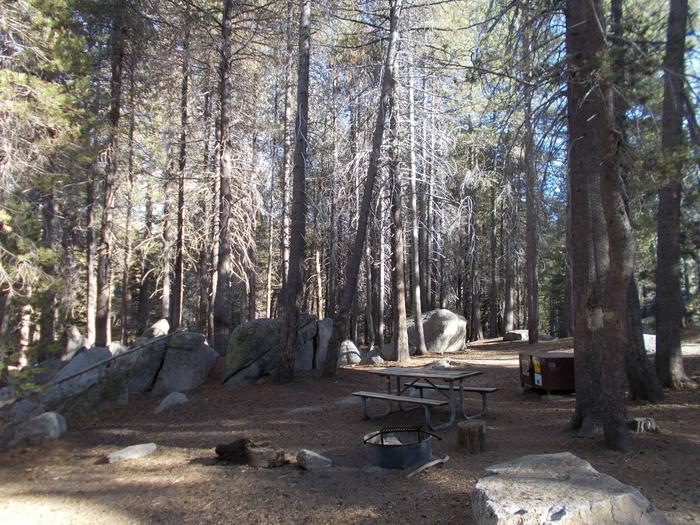 Food locker, picnic table, and fire ringSite 80