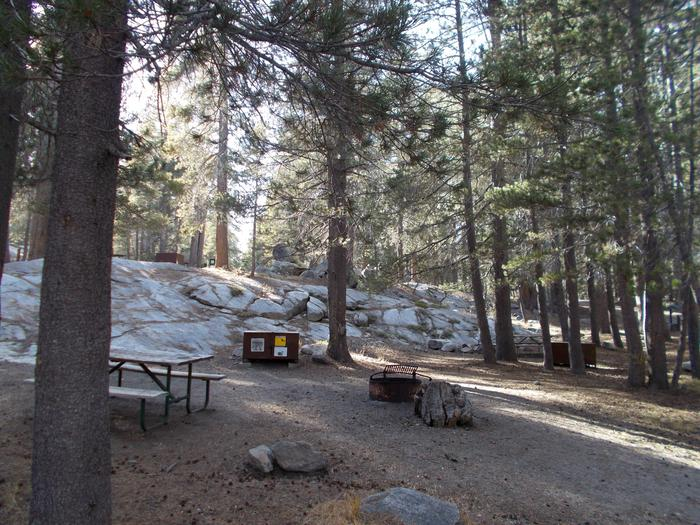 Food locker, picnic table, and fire ringSite 81