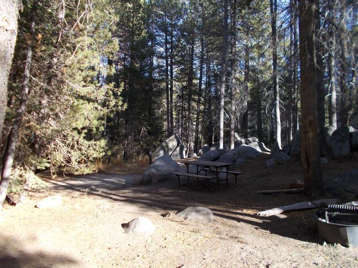 Food locker, picnic table, and fire ringSite 82