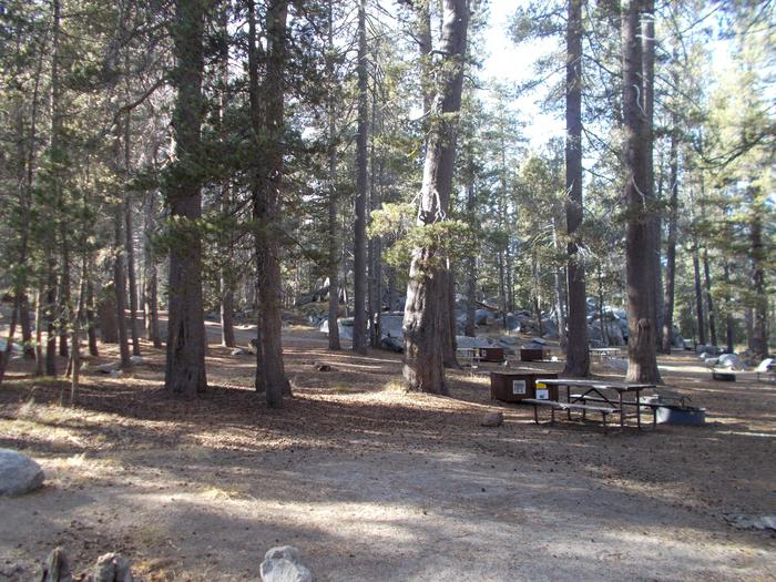 Food locker, picnic table, and fire ringSite 83