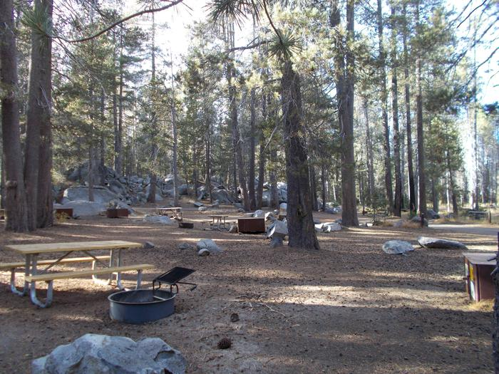 Food locker, picnic table, and fire ringSite 85