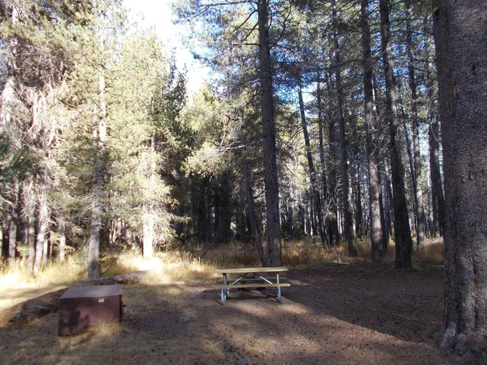 Food locker, picnic table, and fire ringSite 86