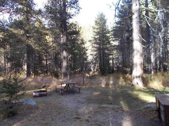 Food locker, picnic table, and fire ringSite 88