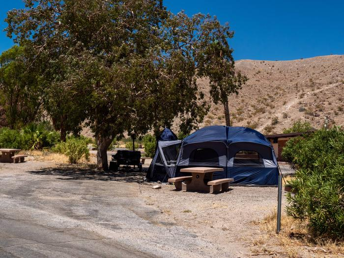 CWC 4201Cottonwood Cove Campground Site 42