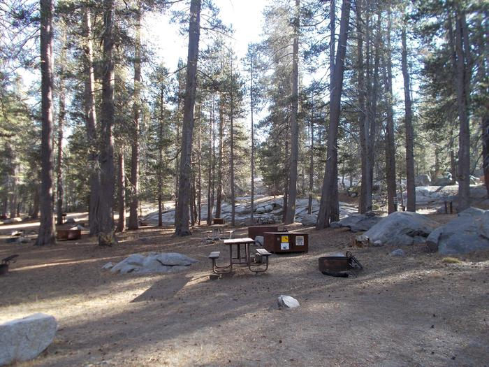 Food locker, picnic table, and fire ringSite 93