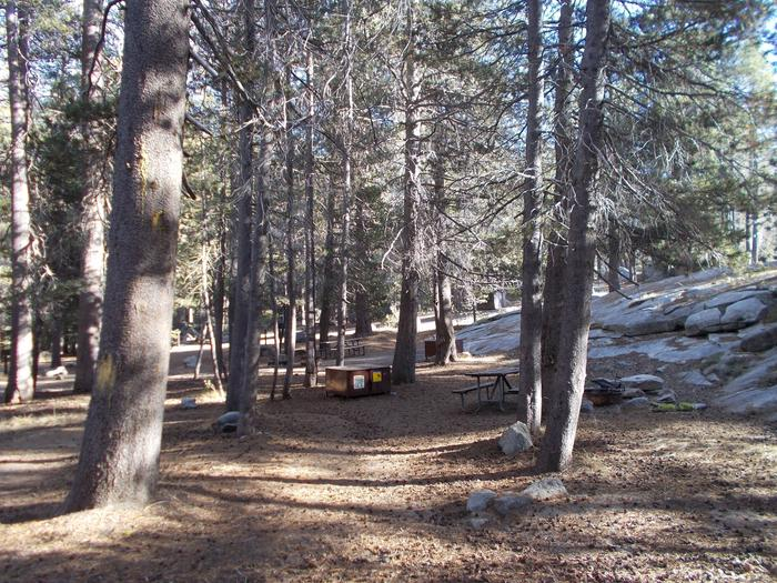 Food locker, picnic table, and fire ringSite 95