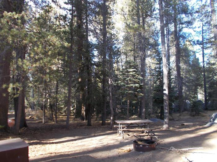 Food locker, picnic table, and fire ringSite 98
