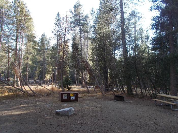 Food locker, picnic table, and fire ringSite 103