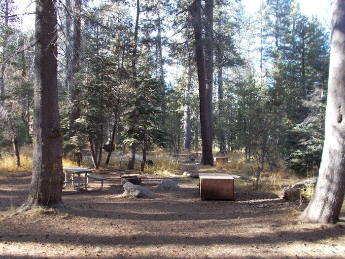 Food locker, picnic table, and fire ringSite 106