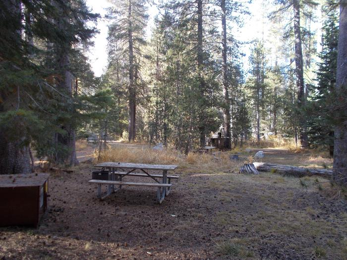 Food locker, picnic table, and fire ringSite 108