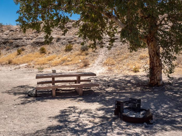 CWC 4302Cottonwood Cove Campground Site 43