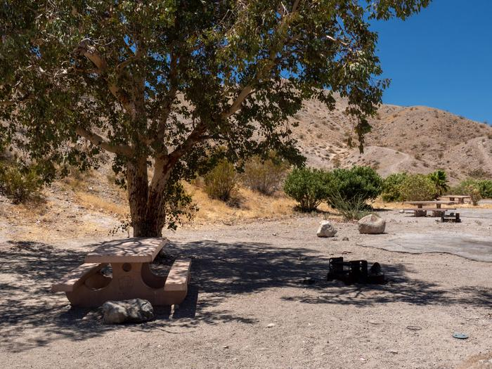 CWC 4303Cottonwood Cove Campground Site 43