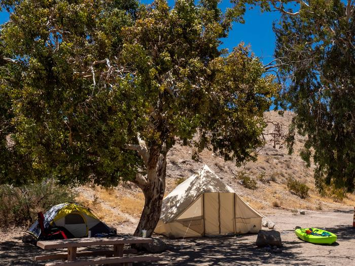 CWC 4501Cottonwood Cove Campground Site 45