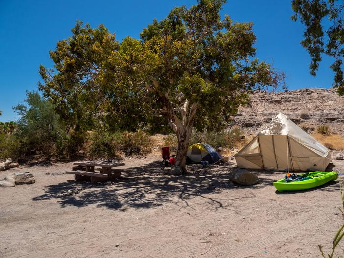 CWC 4503Cottonwood Cove Campground Site 45