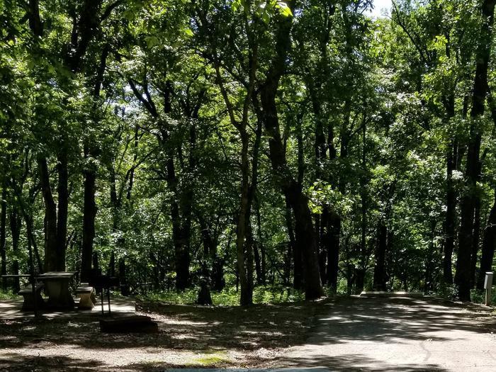 Mound Valley Site #69  30 amp