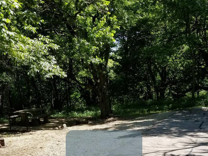 Mound Valley Site #86  30 amp