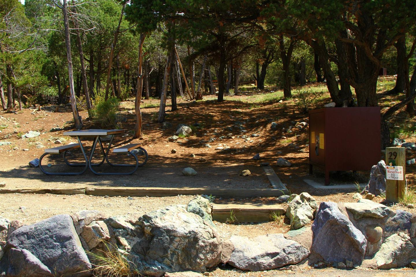 Closeup view of Site #29 stairs, designated tent pad, fire ring, bear box, and picnic table. Pine trees take up the background.Site #29, Pinon Flats Campground