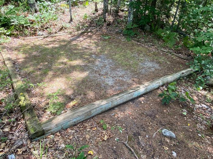 Brown Lake campsite tent pad