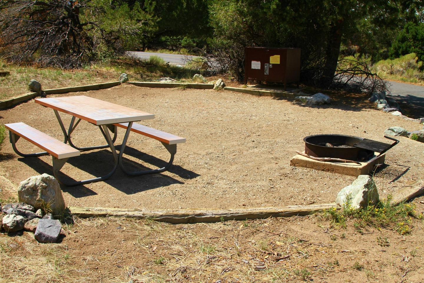 Closeup view of Site #47 designated tent pad, with picnic table, fire ring, and bear box. Road through campground can be seen next to siteSite #47, Pinon Flats Campground