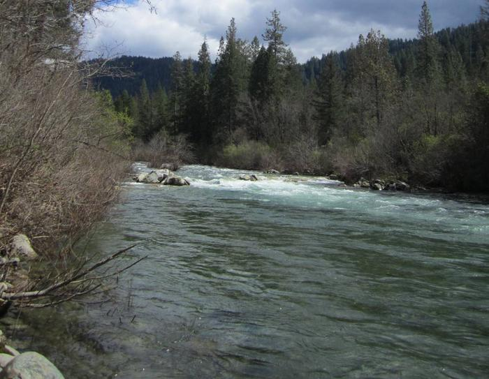 Fiddle Creek Campground View