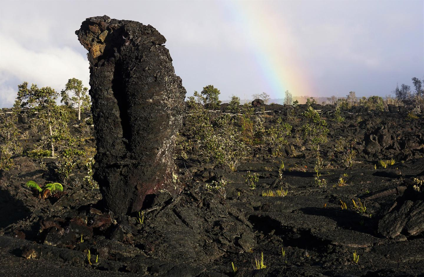 Lava TreesLava trees memorialize trees that once stood in the path of encroaching lava