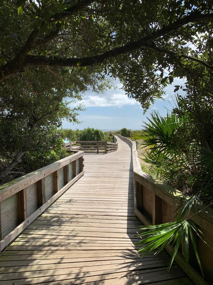 The boardwalk at Sea Camp BeachSea Camp is the easiest beach crossing and a boardwalk takes you over the expansive dune system.