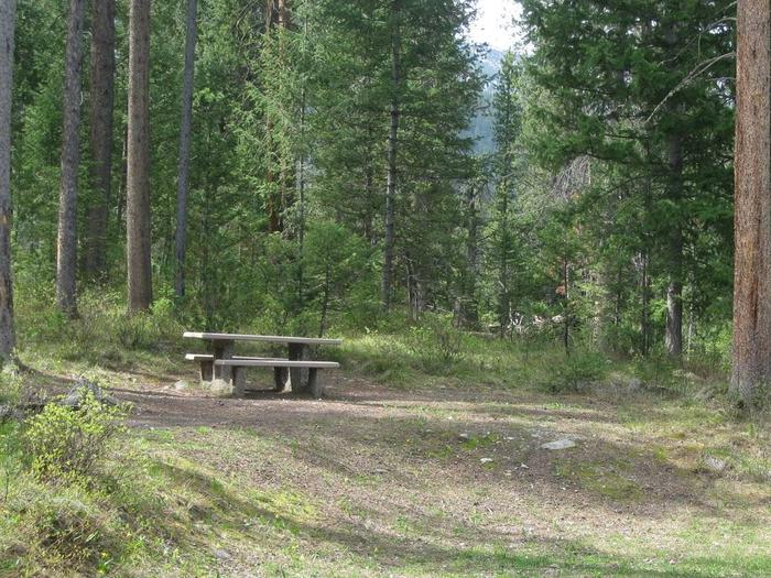 Site A15, campsite surrounded by pine trees, picnic table & fire ringSite A15