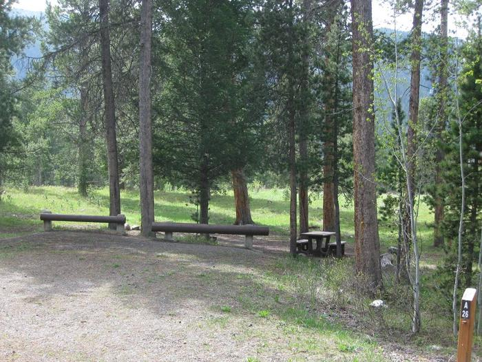 Site A26, campsite surrounded by pine trees, picnic table & fire ringSite A26