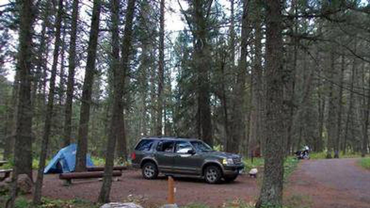 Cabin Creek Campground - Campsite surrounded by pine trees,  picnic table, fire ring, vehicle & tentCampsite