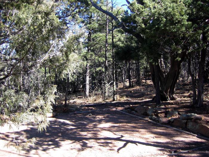 McKittrick Ridge tent padMcKittrick Ridge campsites have tree cover.