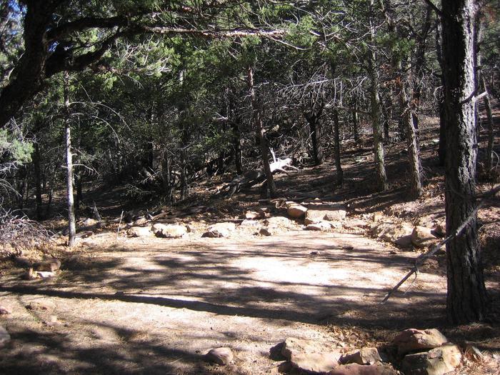 McKittrick Ridge Tent padMcKittrick Ridge tent site