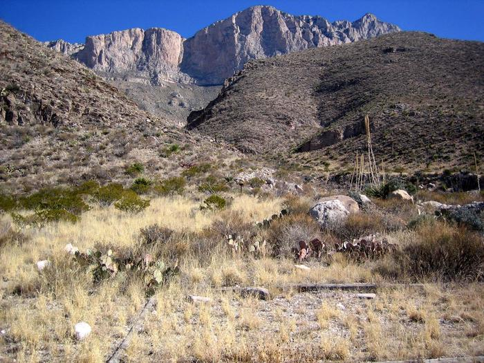 Shumard tent padThe Shumard campsites provide dramatic views of the west face of the Guadalupe Mountains.