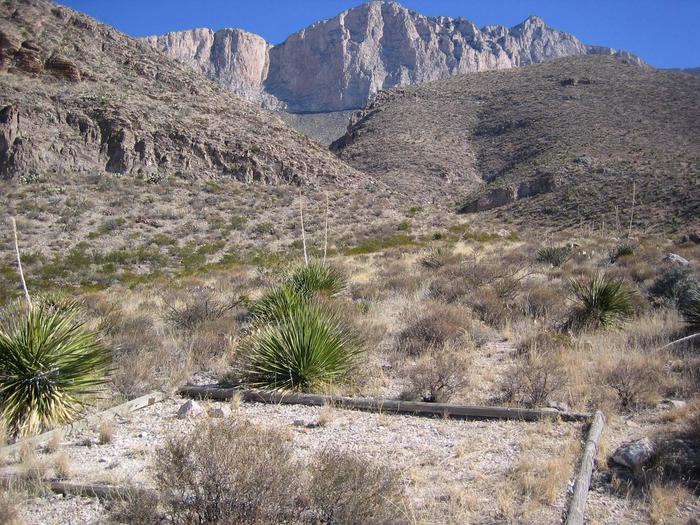 Shumard tent padThe Shumard campsites are below the western escarpment of the Guadalupe Mountains