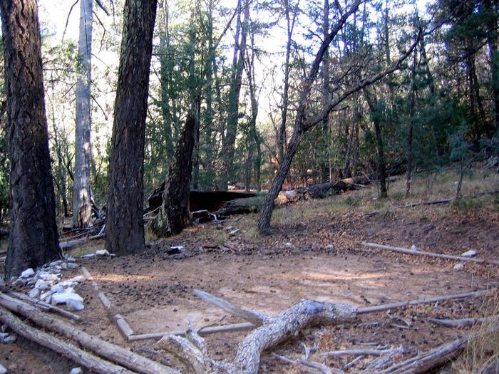 Tejas campsiteTejas campsite tent pad