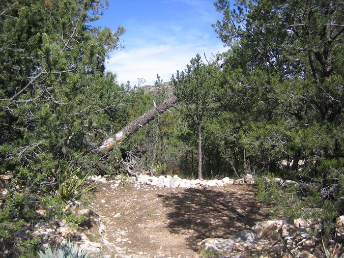 Mescalero campsite