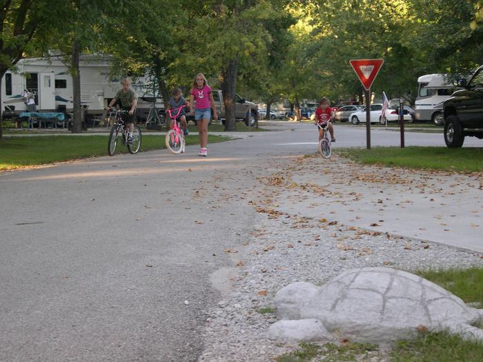 Concrete Turtle and Bicycling