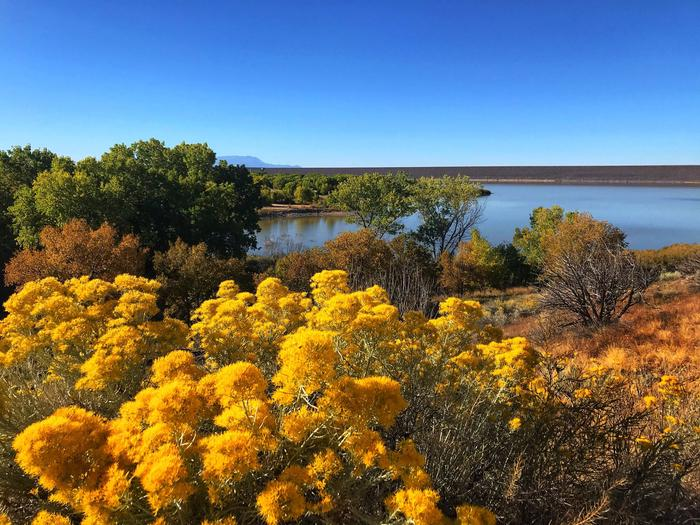 View of orange and red autumn trees surrounding Cochiti Lake Cochiti Lake in Autumn