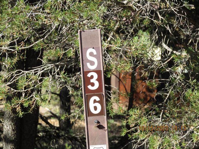 Campsite#36 Camping site #36