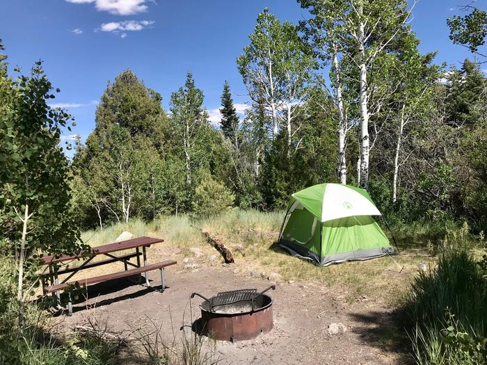 Picnic table, campfire ring and green tent with aspen trees and blue sky behind.Lower Lehman Campfround Site #8