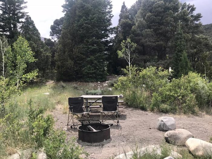 Picnic table, campfire ring and camp chairs with large conifers in backgoundLower Lehman Campground Site #10