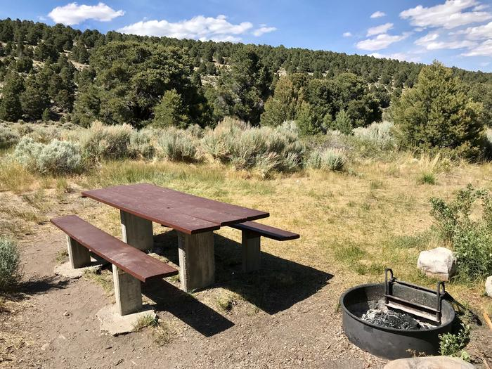 Picnic table and campfire ring in full sun with tree covered slope in the backgroundLower Lehman Campground Site #11