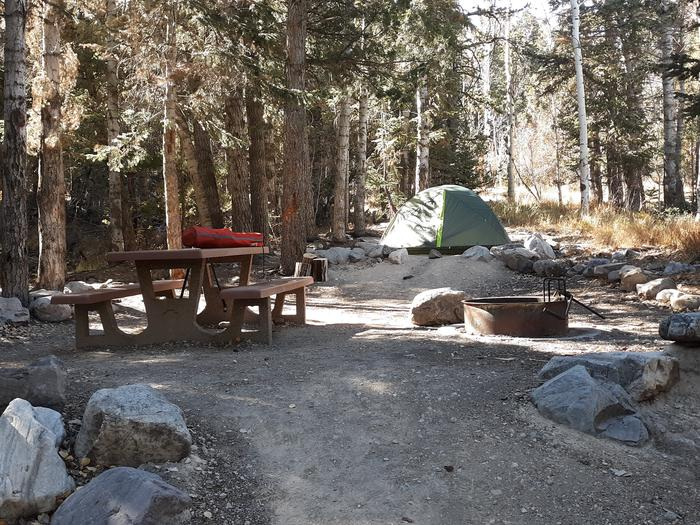 Campfire ring, green tent and picnic table shaded by conifer and aspen trees..Upper Lehman Campground Site #1