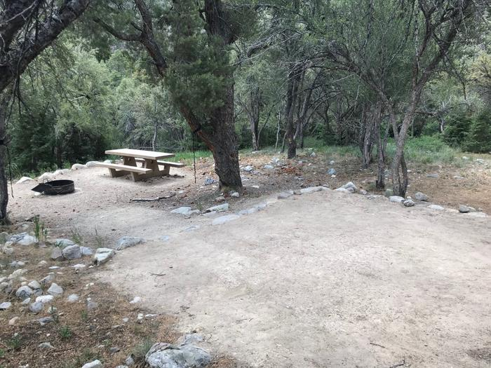 Picnic table, campfire ring and dirt tent pad shaded by mountain mahogany trees.Upper Lehman Campground Site #4