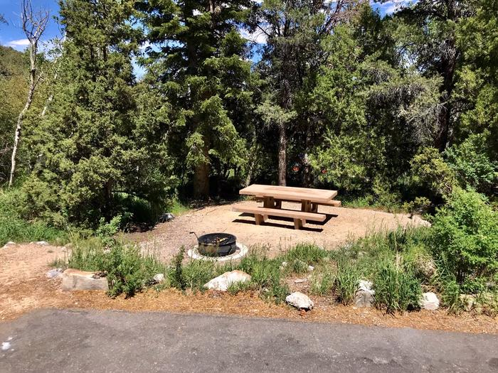 Picnic table and campfire ring with conifers and blue sky behind.Upper Lehman Campground Site #6