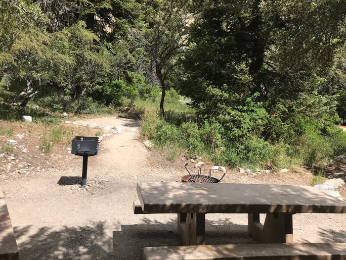 Picnic table, campfire ring and raised grill with conifers surrounded by tree and shrubs.Upper Lehman Campground Site #7