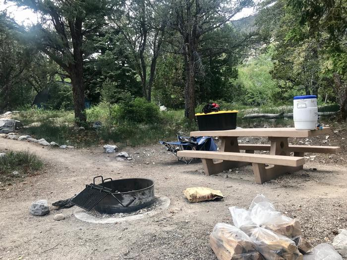 Picnic table, campfire ring and firewood with mountain mahogany tree in the background.Upper Lehman Campground Site #9